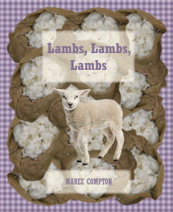 Lambs-cover-high-quality